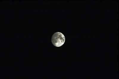 Moonf8